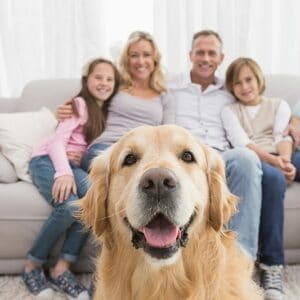 Protecting Your Pet's Future